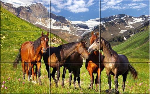 Puzzle - Beautiful Horses 1.24 screenshots 6