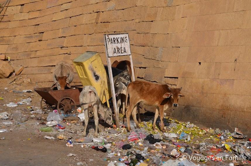 déchets Inde