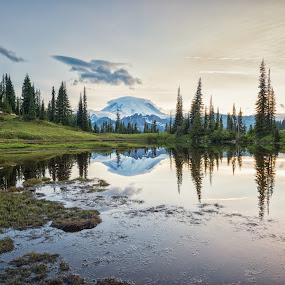 Tipsoo Lake by Amy Ann - Landscapes Mountains & Hills ( mountain, reflection, sunset, lake, trees,  )