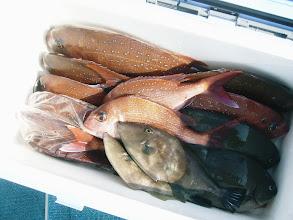 Photo: Uさんも釣ってますねー!