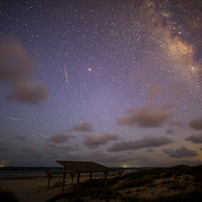 Falling star by Angie Birmingham - Landscapes Starscapes ( milky way, beach, night, nightscape, stars, night photography )