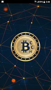 Bitcash Coins - náhled