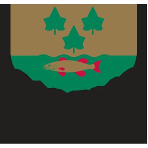 Skogsängsskolan