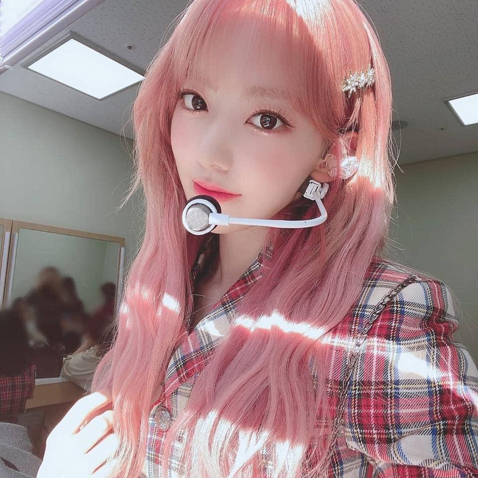 sakura pink 13