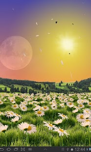 Lovely Daisies Free- screenshot thumbnail