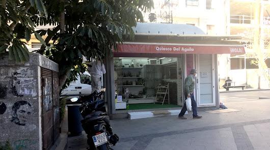 El Kiosco del Aguila está situado en la calle javier Sanz.