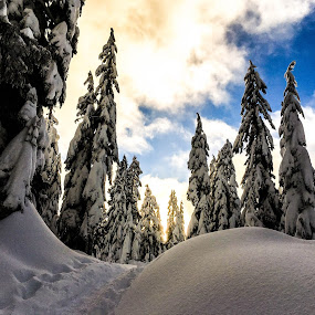 Diana Anaid great shot of Mount Seymour near Flower Lake from her hike yesterday. by Aaron Bushkowsky - Instagram & Mobile iPhone