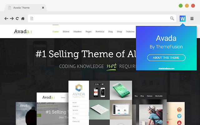 What Is The Theme - WordPress theme detector