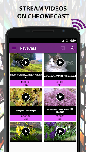 RaysCast For Chromecast