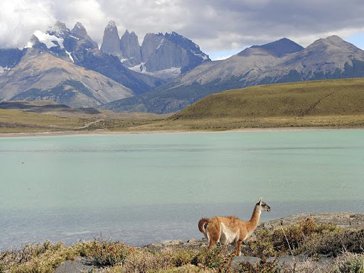 Chile is one of the most intriguing destinations in South America for cruise visitors.