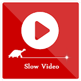 Slow Video Motion