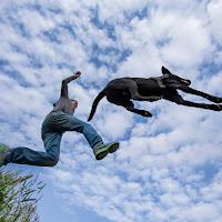 double jump di