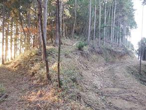 林道と出会う(左から来た)