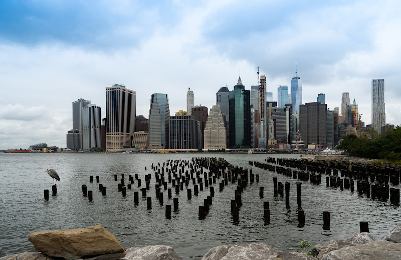 Skyline di Manhattan di Giovanni Coste