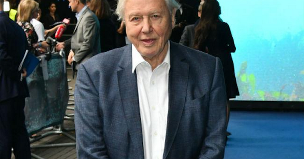 David Attenborough says nature shows have climate change 'responsibility'