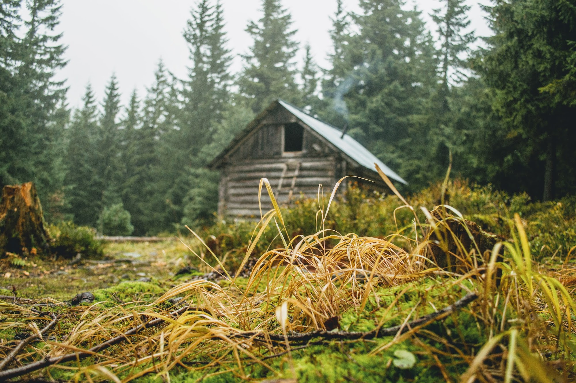 Мисливський будиночок в горах