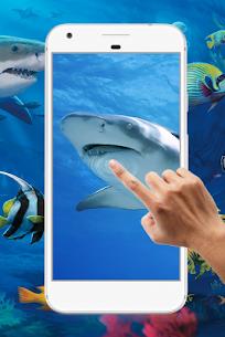 Shark Water Ripple Live Wallpaper 1