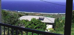 Photo: Vue depuis la terrasse