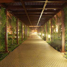 Pathways by Elisa Abiog - Buildings & Architecture Other Exteriors