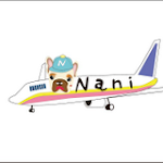 NANI韓國球鞋代購