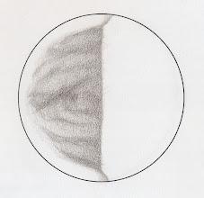 Photo: Vénus le 3 juin 2015 à 19h45TU. A comparer avec celui du 7 juin, une rotation après. T406 à 350X en bino et filtre W47.