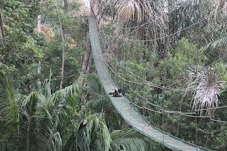 Photo: auch die Affen nehmen diesen Service an ;)