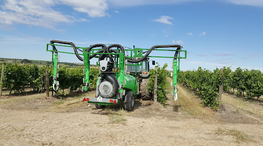 Viñas del Vero consigue hasta un 30% de ahorro en tratamientos fitosanitarios