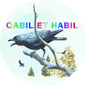 History Of Kabil and Habil icon