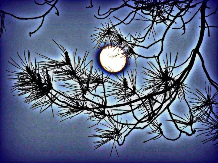 Un sogno...un incubo di lulù2012