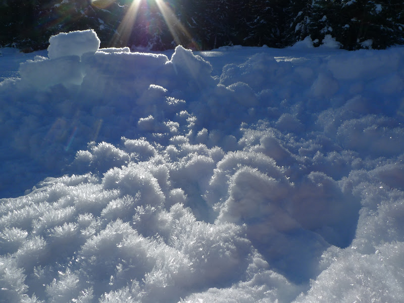 scaglie di ghiaccio s'illuminano d'immenso di stegro
