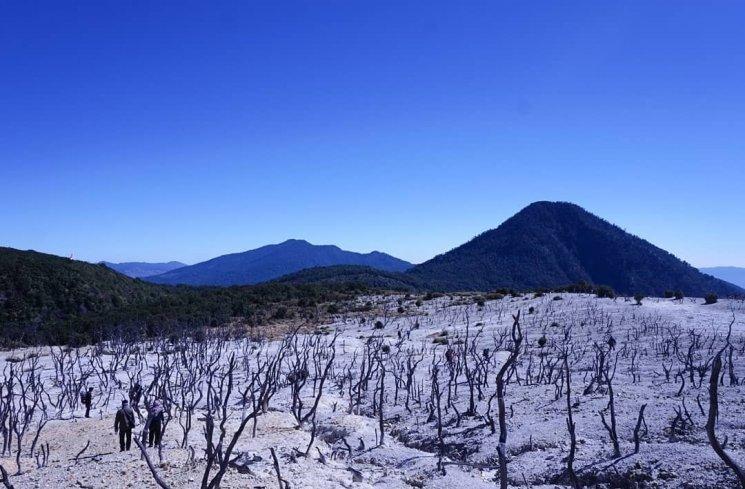 Hasil gambar untuk gunung papandayan
