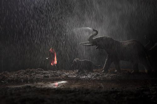 La pioggia - 2020