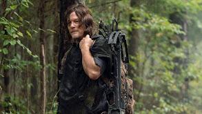Daryl's Story thumbnail