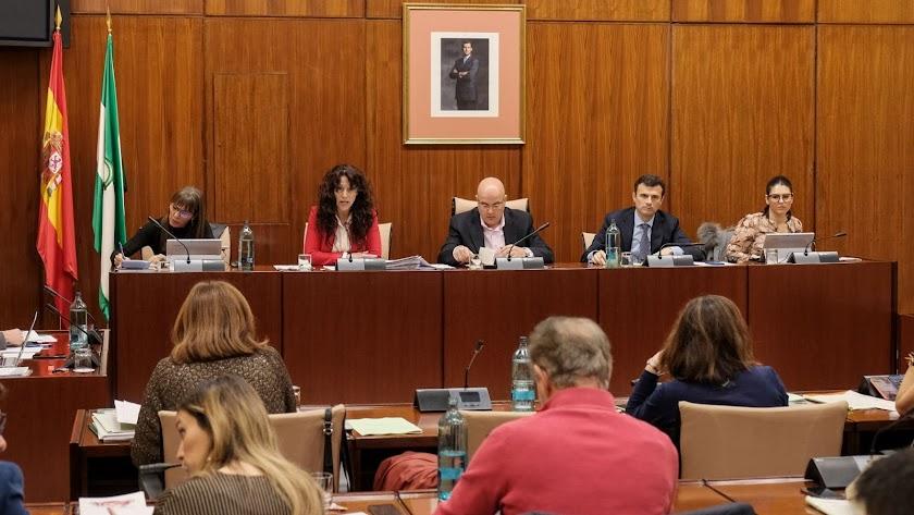 Un momento en la Comisión de Igualdad de este jueves en el Parlamento andaluz.