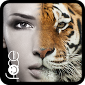 Beauty Face Plus :  face morphing icon