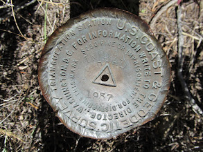 Photo: Indian Head survey marker