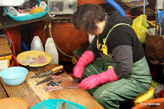 Photo: You can buy fresh fish and ask to make sashimi on the spot - Korean women are soooo fast!