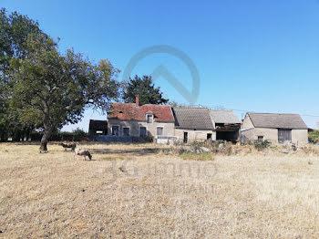 maison à Saint-Pierre-les-Etieux (18)
