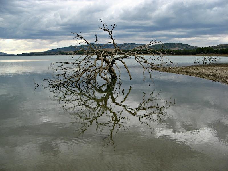 Riflesso sul lago di donyb