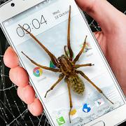 مزحة مضحكة العنكبوت على الشاشة