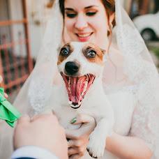 Wedding photographer Andrey Dyba (Dyba). Photo of 01.03.2016