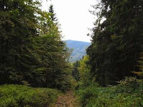 Photo: 21.Babia góra (1725 m) z okolic Mędralowej.