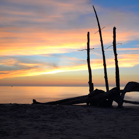 Beach Art by Mandy Schram - Landscapes Sunsets & Sunrises (  )