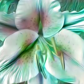 Lily Stargazer green by Cassy 67 - Digital Art Things ( digital, love, harmony, abstract art, modern, light, abstract, digital art, energy )