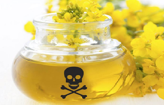 Organic Canola Oil: A Food Fallacy