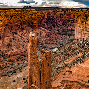 by Cerey Runyon - Landscapes Deserts
