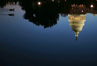 Photo: WASHINGTON, DC - OCTOBER 15: The U.S. Capitol is reflected in water as two Ducks swim past, October 15, 2013 in Washington, DC. With the government shutdown going into the fifttenth day and the deadline for raising the debt ceiling fast approaching, Democrats and Republicans may come to an agreement soon on passing a budget.  (Photo by Mark Wilson/Getty Images)