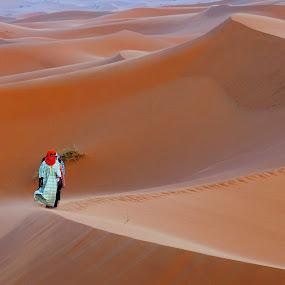 Sahara by Tomasz Budziak - Landscapes Deserts ( landscapes, africa, morocco, deserts )