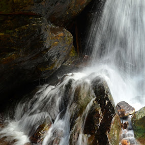 water flow by Abinash Patra - Nature Up Close Water ( water, rock, landscapes )