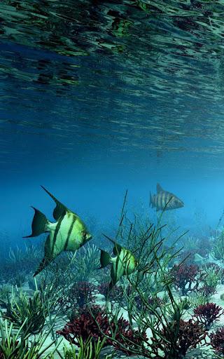 Ocean HD Live Wallpaper